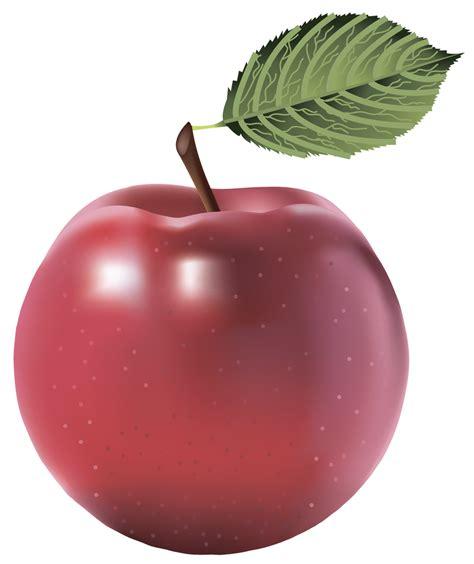 apple wallpaper transparent apple clipart transparent background clipground