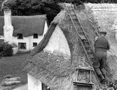 andrew herbert roofing 1000 images about thatching roofs on thatched