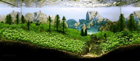 岩が浮いている 水草レイアウト会の世界の頂点が別世界すぎる the international aquatic