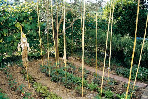 piccolo orto in giardino giardini