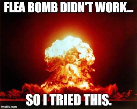 Bomb Meme - nuclear bomb meme memes