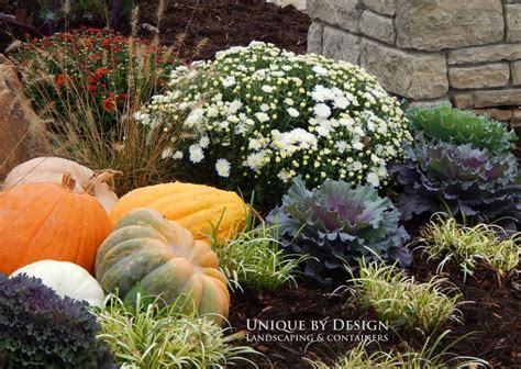 17 best images about fall flower bed ideas on pinterest container gardening pumpkins and cabbages