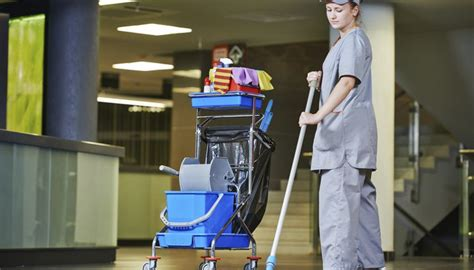 best cleaning professionals resume example livecareer