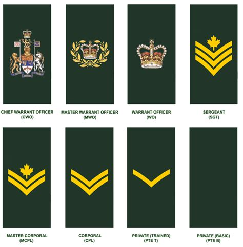 canadian military rank structure for the air force navy and army canadian military officer rank structure