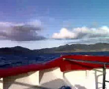 jet boat bay of islands offshore jet boat ride on mack attack bay of islands