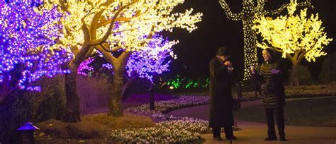 botanical garden light show cheekwood lights seasonal display
