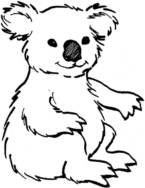 koala coloring page animals town free koala color sheet