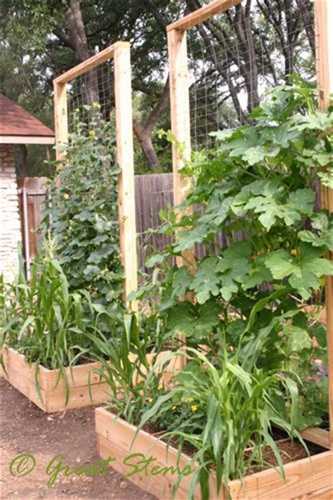square foot garden maximize vertical potential with