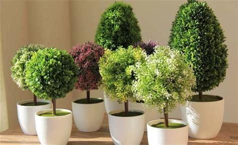 decoracion de interiores con plantas artificiales plantas artificiales decoraci 243 n