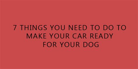 what do you need to build a dog house 7 things you need to do to make your car ready for your dog doggyzoo comdoggyzoo com