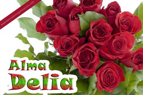 Banco De Imagenes Rosas Rojas Con Nombres De Personas Y Mensajes Para   banco de im 193 genes rosas rojas con nombres de personas y