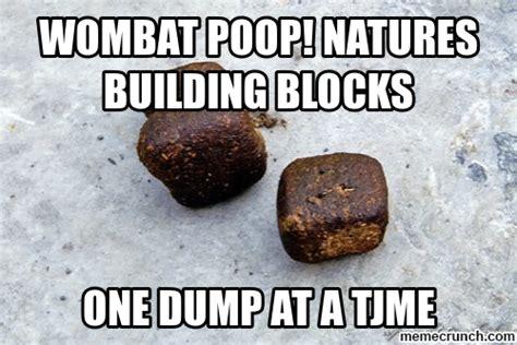 Meme Poop - wombat poop