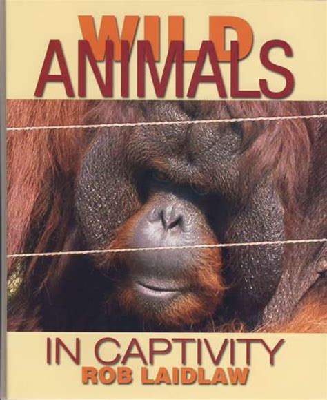 animals in captivity books children s books rob laidlaw books
