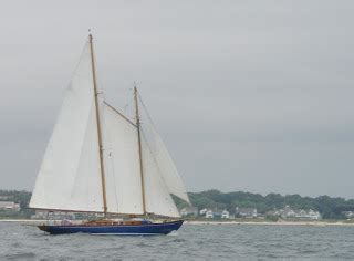 sailboats meaning in the next apartment roses sailboats and the meaning