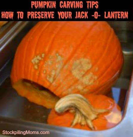 how to preserve your jack o lantern and make it last all