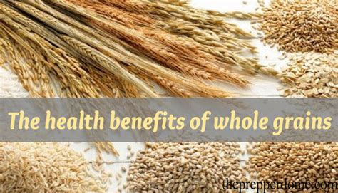 whole grains benefits the health benefits of whole grains the prepper dome