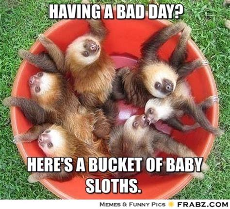 Baby Sloth Meme - meme generator bad day image memes at relatably com