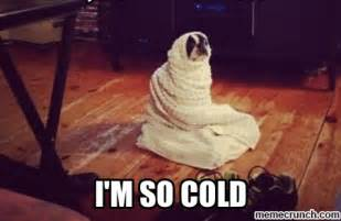 Freezing Cold Meme - i m cold related keywords i m cold long tail keywords