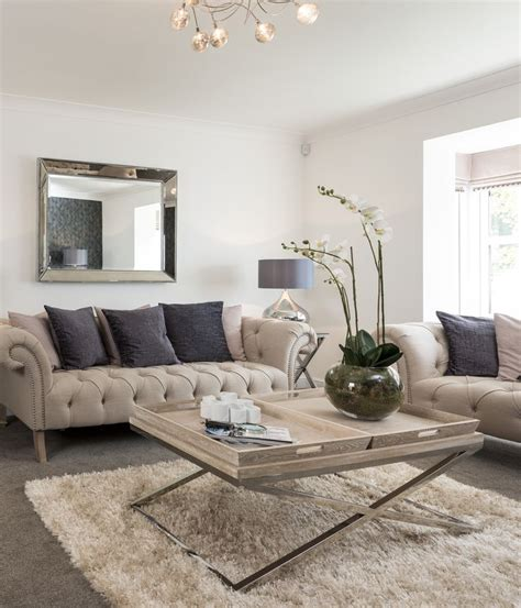 Living Room Silver Carpet Best 25 Sofa Ideas On Classic Home