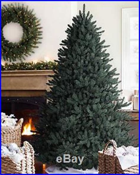 blossom hill christmas trees balsam hill classic blue spruce artificial tree 7 5 clear light
