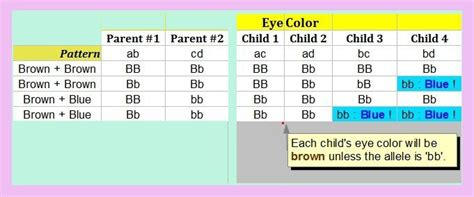 how to determine baby eye color secret eye colour tip to determine how smart your
