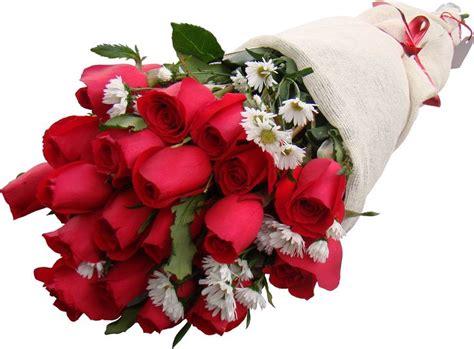 imagenes de rosas oscuras m 225 s de 25 ideas incre 237 bles sobre ramo de rosas rojas en
