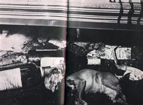 jayne mansfield death pictures