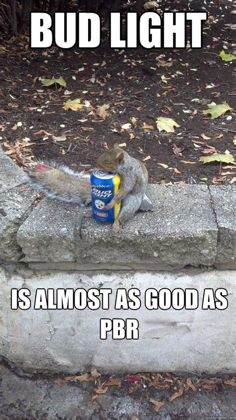Bud Light Meme - go home squirrel you re drunk drunk squirrel quickmeme