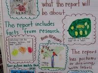 Junie B Jones Book Report Template 17 Best Images About Book Report On Parks
