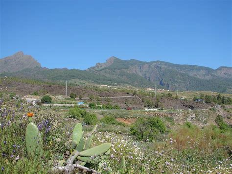in vendita alle canarie tenerife terreno in vendita tenerife proprieta immobiliare isole
