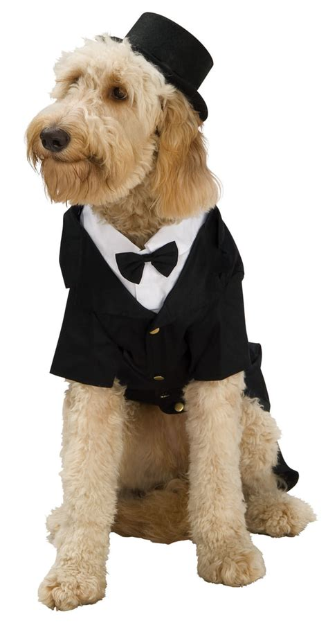 costumes for large dogs dapper costume costume craze