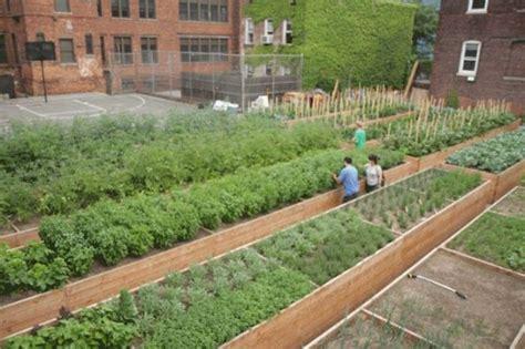 Backyard Organic Farming by Top 5 Farms In New York City Inhabitat New York City