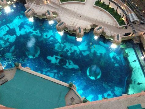 aquarium hotel room view from hotel room to aquarium picture of atlantis the palm dubai tripadvisor
