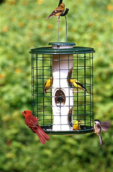 caged bird feeders that discourage squirrels at bird