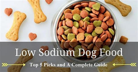 low sodium dogs low sodium food top 5 picks and reviews