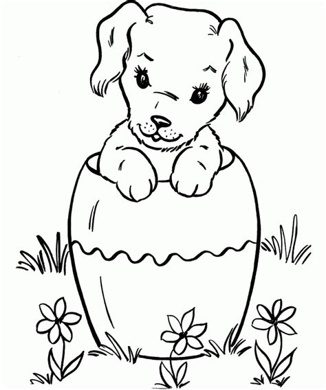 harry the dirty dog coloring sheet coloring home