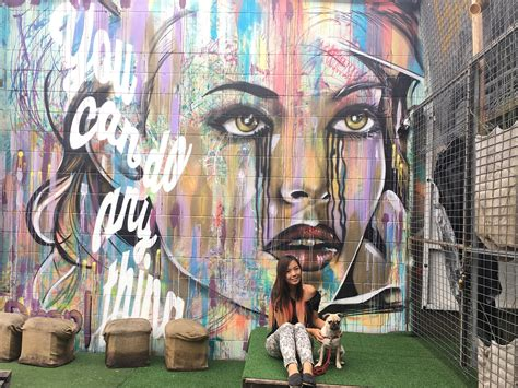 Unusual Wall Murals top 15 graffiti and street art spots in brisbane brisbane