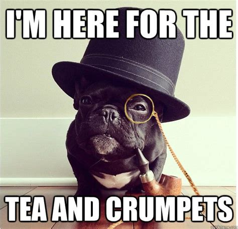 Tea Party Memes - funny tea memes tea pinterest crumpets summer jobs