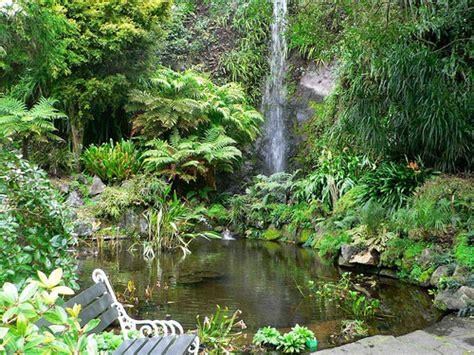 edens garden eden gardens epsom auckland new zealand idyllic