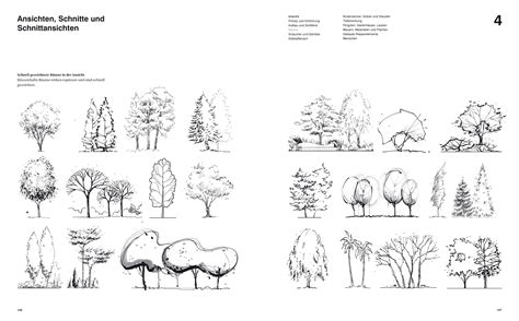 learn architectural sketching trees on watercolor trees photoshop and site