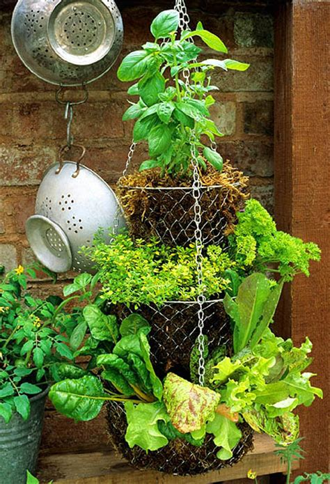 dishfunctional designs hanging basket herb garden diy