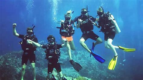 dive in scuba scuba diving koh tao thailand scuba junction diving home