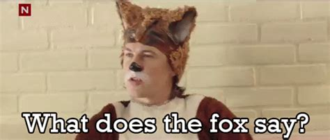 What Did The Fox Say Meme - fantastic mr fox by roald dahl reviews discussion