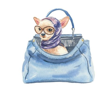 puppy in a purse behaviour what should be in a owner s purse pawsh magazine