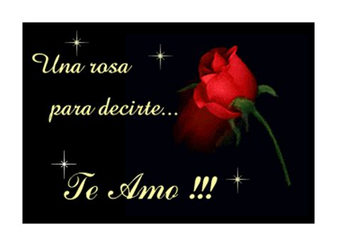 imagenes te amo con una rosa frases cortas de amor para el d 237 a de los enamorados san