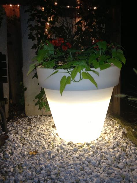 Glow In Planters by 130 Best Images About Container Garden Pot Types And Ideas