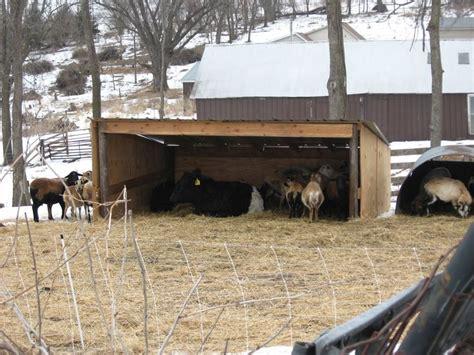 imgjpg  sheep shelter animal shelter