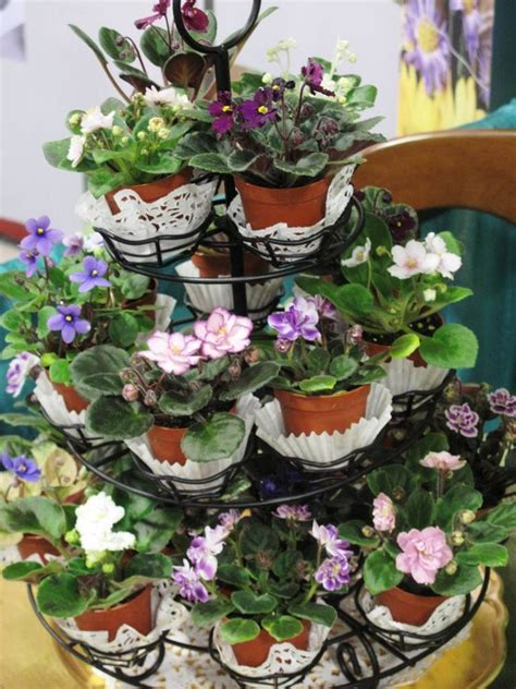indoor plants arrangement ideas beautiful tiered cake stand in landscape tropical with