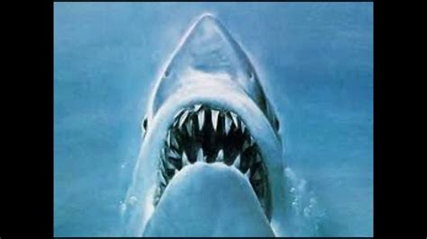 jaws theme music youtube jaws theme song youtube