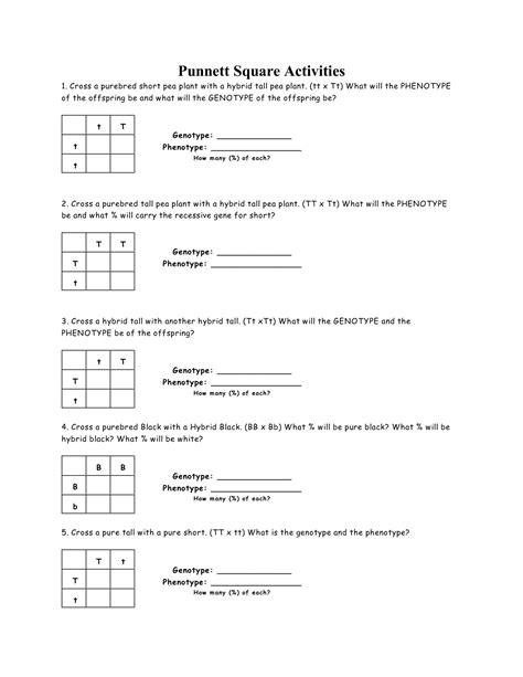 Punnett Square Problems Worksheet by 15 Best Images Of Punnett Square Worksheet Answer Key